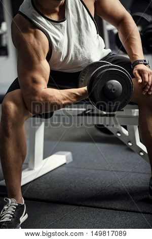 Bodybuilding workout. Confident hard working athletic man sitting on a gym apparatus and lifting a dumbbell while training
