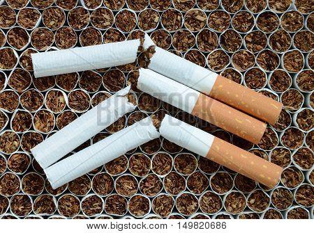 Close up broken cigarettes against the tobacco.
