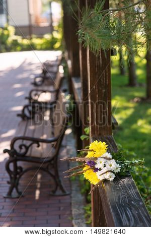 Bouquet on wooden fence. Light colored flowers. Smell of camomiles. Purity and warmth.