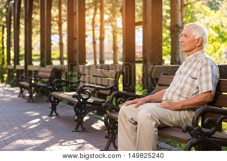 Senior man on park bench. Relaxed elderly male. Spend day in open air. Silence and calmness.