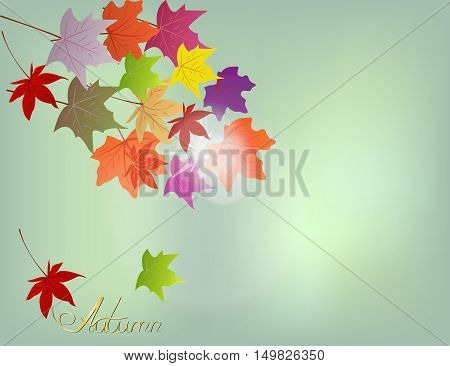 Yellow light background with falling autumn leaves and blue sky