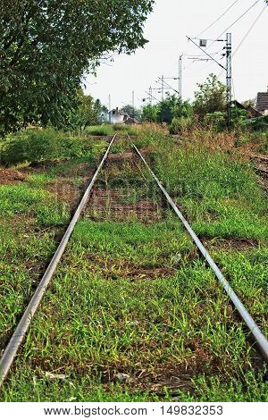 Old, abandoned train tracks overgrown with grass