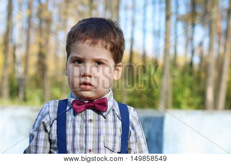 Plump little boy in shirt and bow tie looks at camera in sunny green park