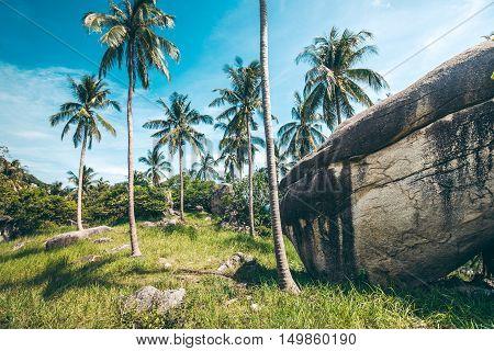 Tropical Landscape Of Thailand