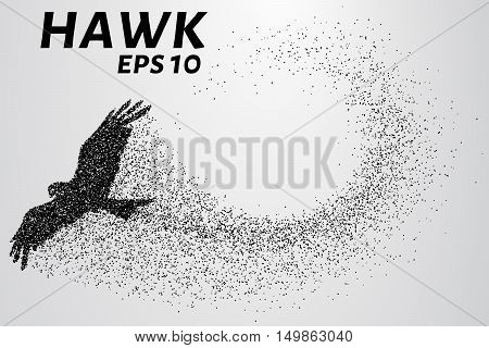 Hawk of the particles. The silhouette of a hawk consists of small circles.