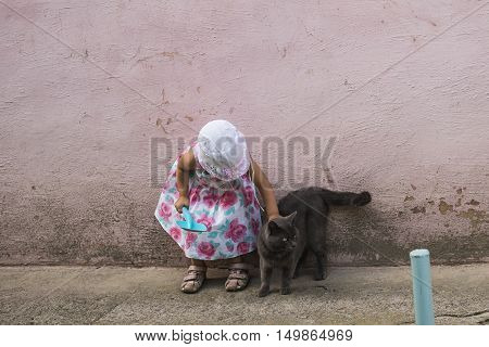 Girl and cat / Little girl is playing with a cat