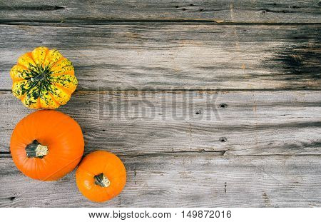 three Pumpkin squash over wood plank background