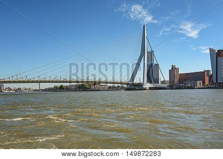 Picture of the Erasmus bridge with on the right de building Tower on South.