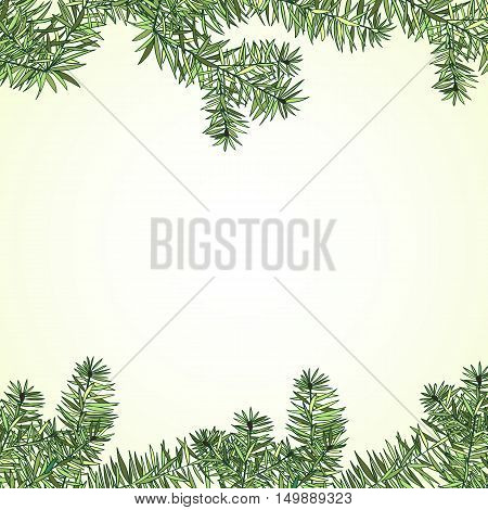 Christmas and New Year fir invitation card. Hand drawn fir branch border. Vector illustration on light background Winter holiday collection