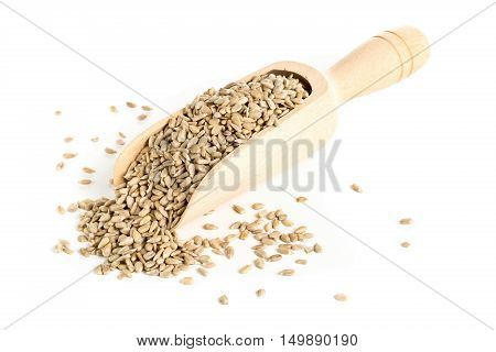 Natural shelled sunflower seeds in wooden scoop over white background