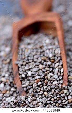 Wooden scoop with chia seeds close up