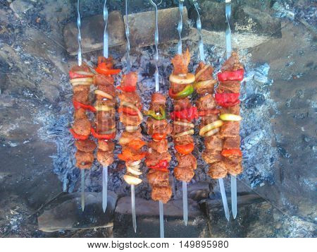 Shish kebab on skewers with onions and pepper on a self-made grill