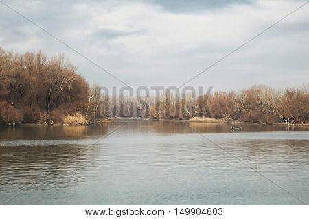 Lakeside landscape in the autumn