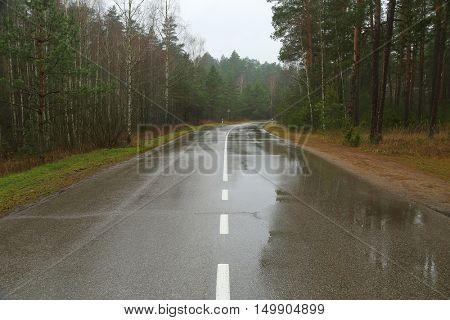 Wet road after autumn rain