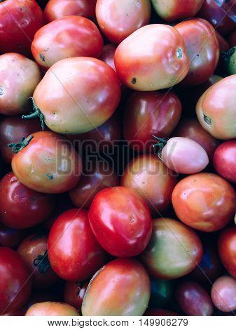 Closeup view of fresh tomato, view group of many tomato, a lot of tomato, tomato background