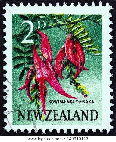 NEW ZEALAND - CIRCA 1960: A stamp printed in New Zealand shows Kowhai Ngutu-kaka (Kaka Beak), circa 1960.
