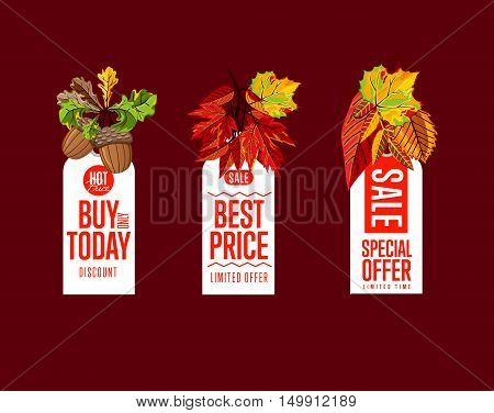 Autumn seasonal sale badges set, vector illustration. Buy only today, best price and special offer labels on red background with colorful autumn leaves. White price tag with red text