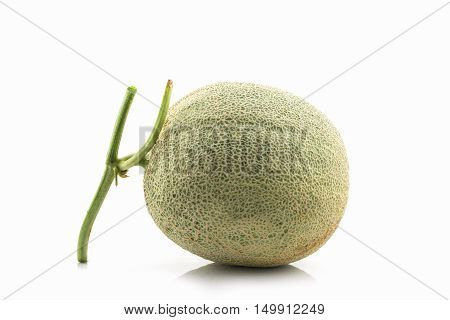 Close up of whole cantaloupe fruit on white background. Green melon.