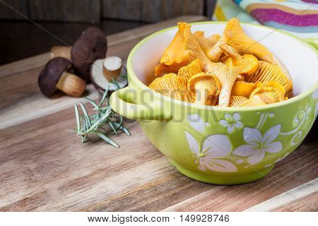 Bowl With Cantharellus. Yellow Chanterelle