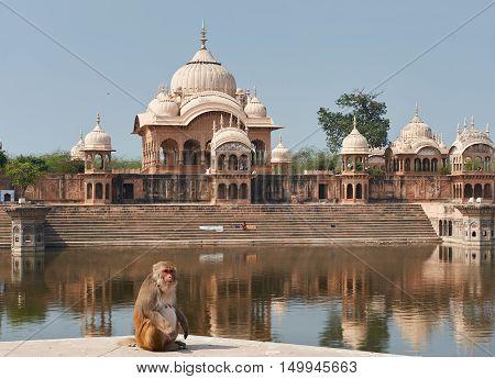 Kusum Sarovar  In Mathura Uttar-pradesh, India.