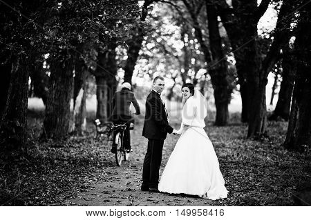 Wedding Couple Walking On The Park Looking Through