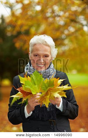 Elderly Woman Collecting Maple Leaves