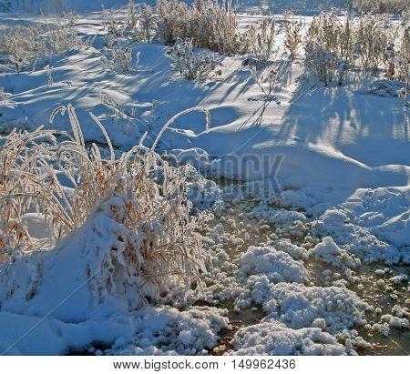 Winter Walk Along The River