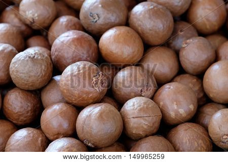 Macadamia nut background in the big  room
