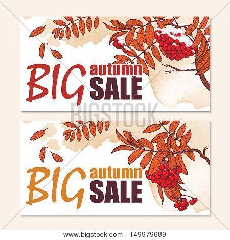 Seasonal sale website header or banner set. Autumn rowanberry branch. EPS10 vector illustration.