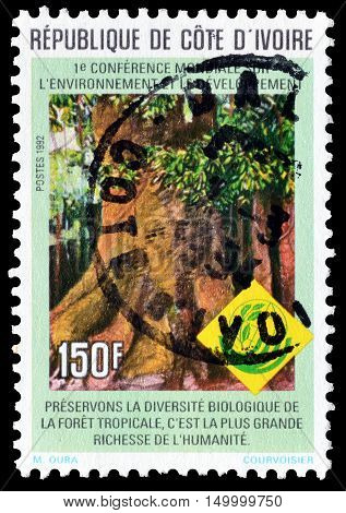 IVORY COAST  - CIRCA 1992 : Cancelled postage stamp printed by Ivory Coast, that shows Tropical tree.