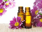 foto of essential oil  - Bottles of Essential Oil and Pink Flowers - JPG
