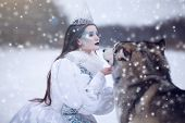 Snow Queen In Winter. Fairy Tale Girl With Malamute. poster