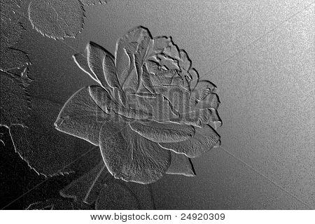 Rose Bas Relief