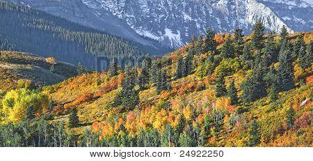 Mount Sneffel Ridgeline