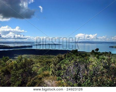 Golfo de Hauraki