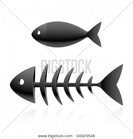 Fish skeleton. Vector.
