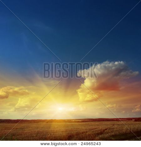 Sunset sky with rays of light over field.