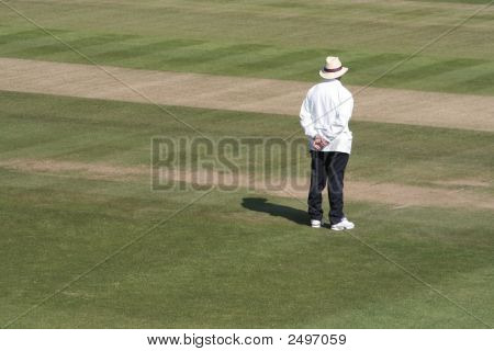 Square Leg Cricket Umpire