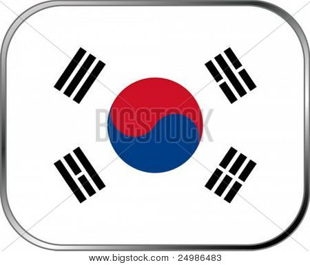 South Korea flag icon with official coloring