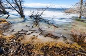 This Is An Image From The Shore Of Barr Lake, At Barr Lake State Park, In Brighton, Colorado, In The poster