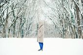 Woman In The Snowy Winter Forest. Winter Girl Walking In Winter Park Outdoor. Winter Fashion Concept poster