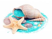 Sea Shells And Sea Stars With Sea-green Sea Salt Isolated On White Background poster