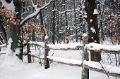 image of split rail fence  - Fresh snow on an old split rail fence - JPG