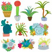 Cactus Vector Botanical Cacti Potted Cute Cactaceous Succulent Plant Botany Illustration Floral Set  poster