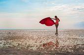 Slender Girl On The Salt Lake Of Elton, Volgograd Region, Russia. Lake Elton. A Girl In A Red Bathin poster
