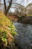 A Calm Flow Of The Ramenka Rivulet. Energizing Spring Sunlight Awakens Nature. poster