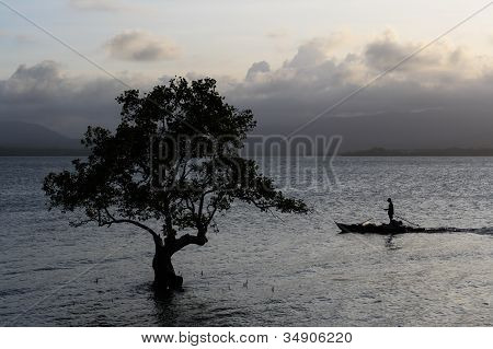 Silhouette Of A Lonely Tree In The Ocean And A Fisherman On A Boat