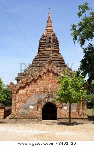 Brick Pagoda And Tree In Old Bagan