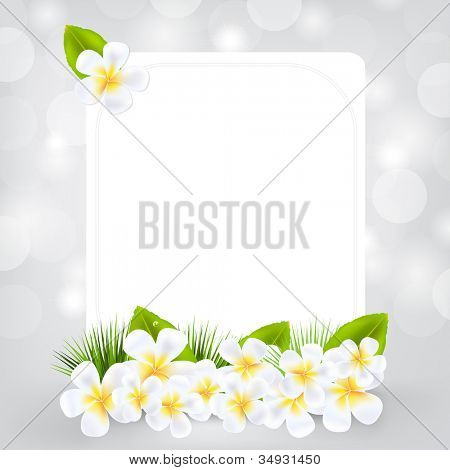 Gift Card With Frangipani, Isolated On Grey Background, Vector Illustration