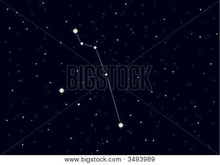 "Vector Constellation ""Pisces"""